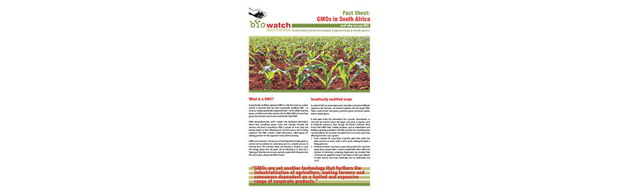 Fact Sheet: GMOs in South Africa