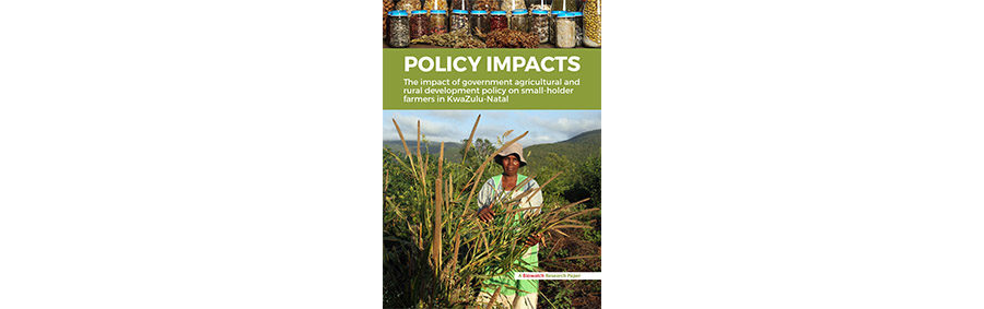 Research Paper: Policy Impacts - The impact of government agricultural and rural development policy on smallholder farmers in KwaZulu-Natal