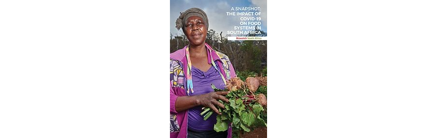 The impact of COVID-19 on food systems in South Africa